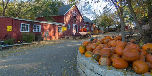 October Teen and Adult Meet Up at Vala's!
