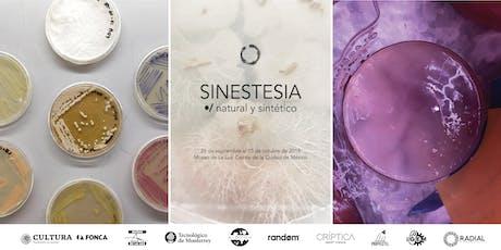 Sinestesia: Natural y Sintético/Inauguración entradas