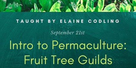 Intro to Permaculture: Fruit Tree Guilds tickets