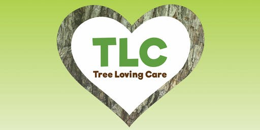 Tree Loving Care Workshop