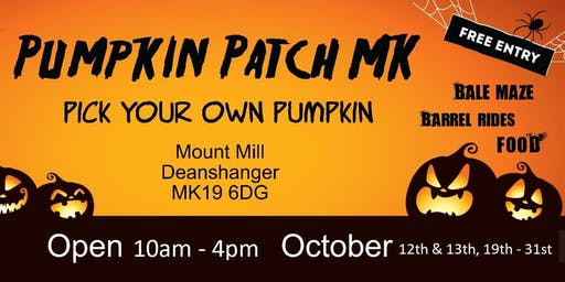 The Pumpkin Patch Milton Keynes Pick Your Own Pumpkin.
