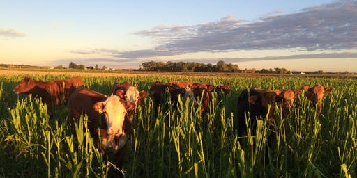 Soil Health Summit: Edible Landscapes