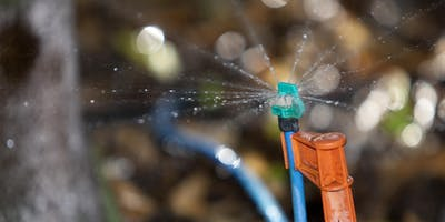 Microirrigation for the Home Landscape