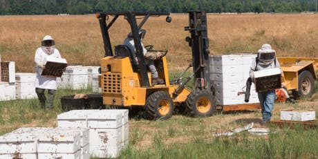 How to Establish an On-site Forklift Training Program for Apiary Workers tickets