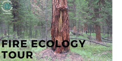 Fire Ecology Tour