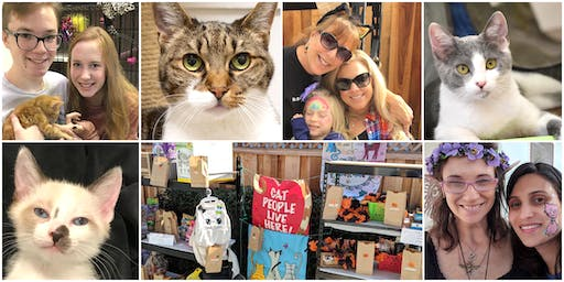 13th St Cats - 14th Annual Open House