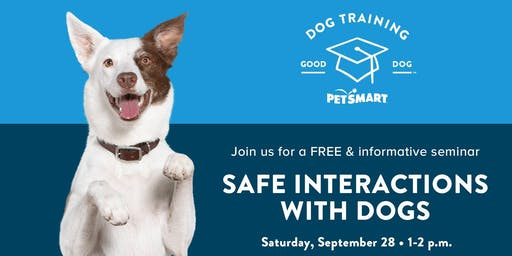 Safe Interactions with Dogs
