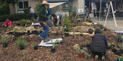 Rio Vista Demonstration Food Forest Installation (Day 3)