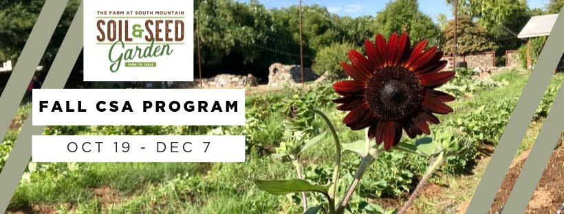 Soil & Seed Garden 8-Week Fall CSA Program
