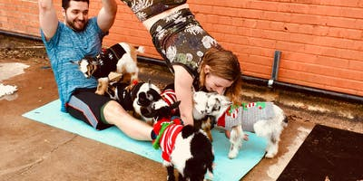 Goat Yoga Houston Friendswood