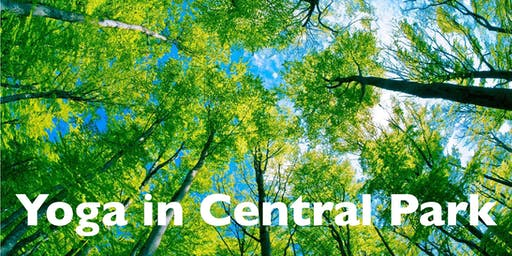 Yoga in Central Park (Free!)