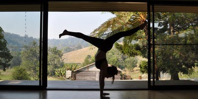 Introduction to Handstand