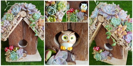 Succulent Birdhouse Workshop
