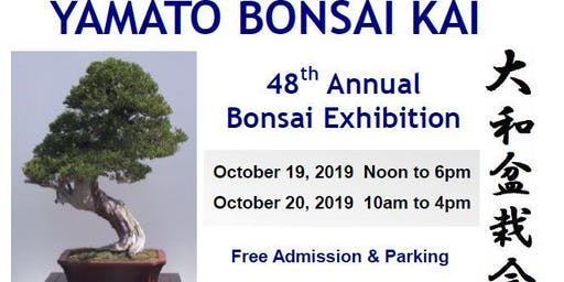 Yamato Bonsai Kai 48th Annual Bonsai Exhibition