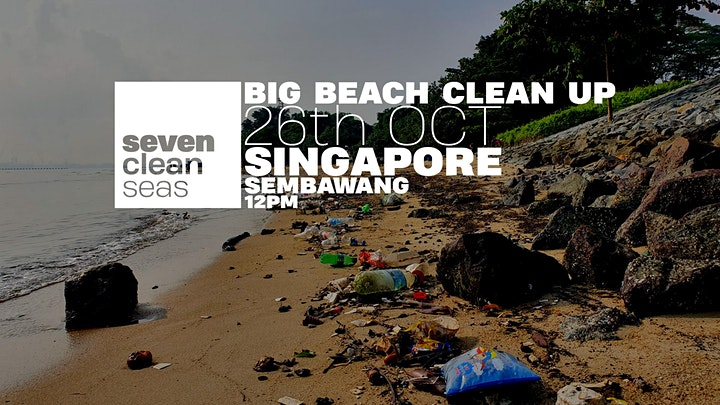 Big Beach Cleanup - Singapore image