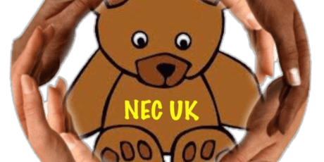 NEC UK Family Day (Northern) tickets