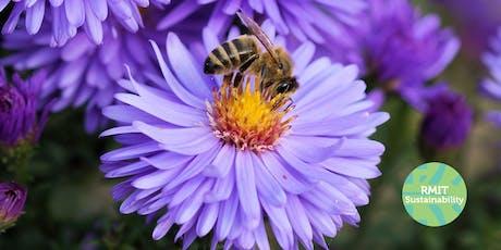 Bees & Biodiversity (RMIT Sustainability Showcase) tickets