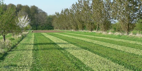 Agroforestry – A Win Win for Farm productivity and the Environment tickets