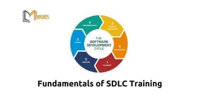 Fundamentals of SDLC 2 Days Virtual Live Training in Hamburg