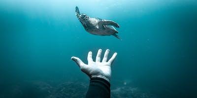Ocean Film Festival World Tour - Rosebud 28 March 2020
