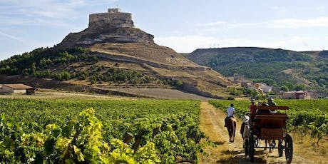 A Rioja for all occasions: wine tasting tickets