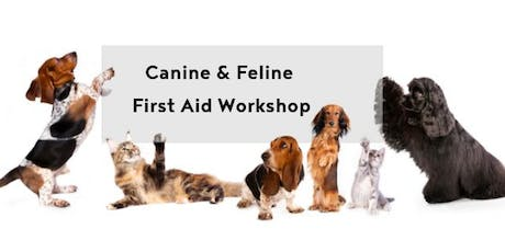 Canine & Feline First Aid workshop tickets