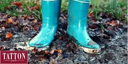Welly Nature Walk at Tatton Park