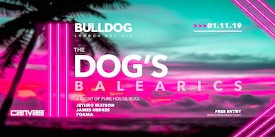 Bulldog Gin: The Dog\