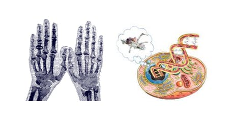 Biology Week Hand Engineering & How to Build a Human tickets