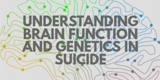 Understanding Brain Function and Genetics in Suicide