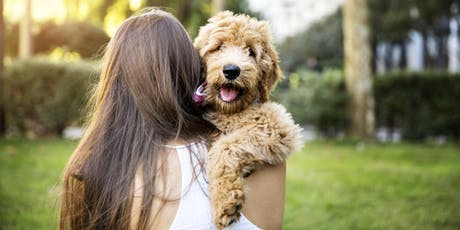 PUPPY MANNERS (LEVEL 1) SUNDAY, MARLAY PARK tickets