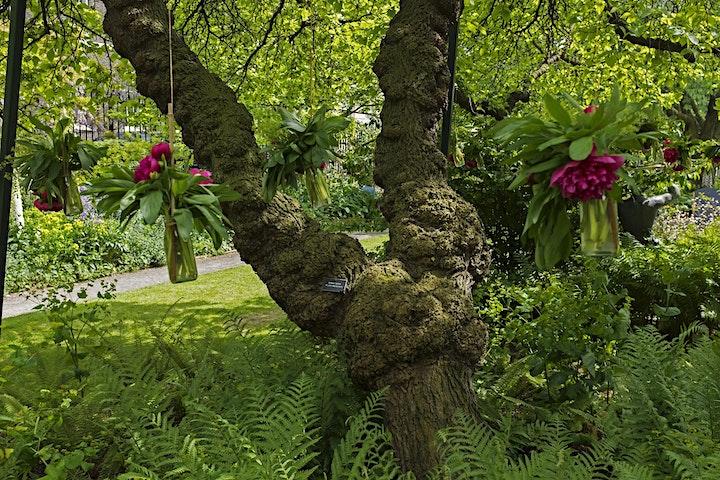 Midweek Mulberries: Inns of Temple image