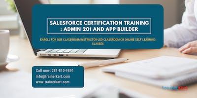 Salesforce Admin 201 & App Builder Certification Training in Cedar Rapids, IA
