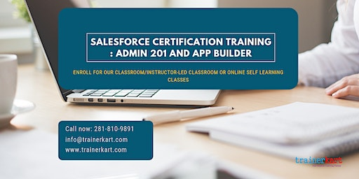Salesforce Admin 201 & App Builder Certification Training in Elmira, NY