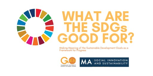 What are the SDGs good for?