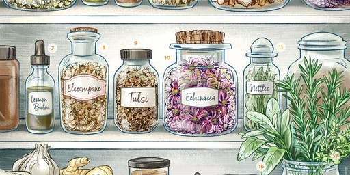 Building your Home Apothecary: Herbs & Art!