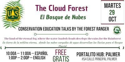 The Cloud Forest / El Bosque de Nubes
