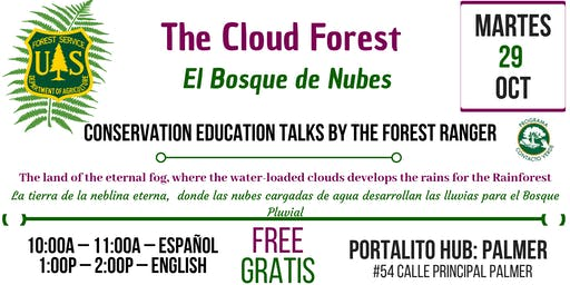 The Cloud Forest / El Bosque de Nubes