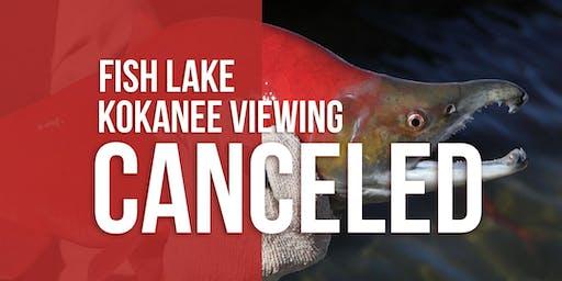 Kokanee Salmon Viewing Event -Fish Lake **CANCELED**