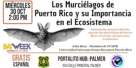 Los murciélagos de Puerto Rico y su importancia en el ecosistema tickets