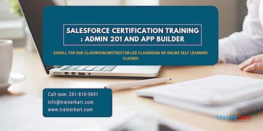 Salesforce Admin 201 & App Builder Certification Training in Jamestown, NY