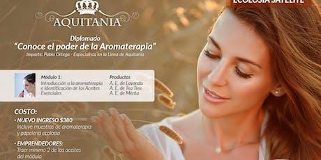 """Diplomado """"Conoce el poder de la aromaterapia"""" entradas"""