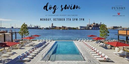 Dog Swim at Sagamore Pendry Baltimore