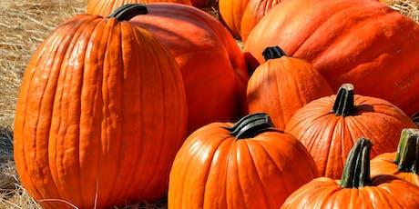 Pumpkin Science Workshop tickets