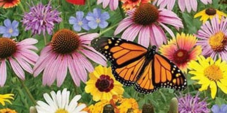 Design Your Own Pollinator Garden Workshop tickets