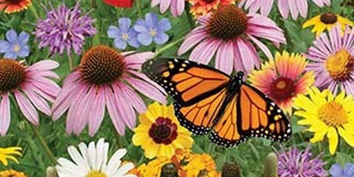 Design Your Own Pollinator Garden Workshop