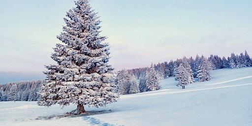 Meet the Seasons Newcomer Nature Tour