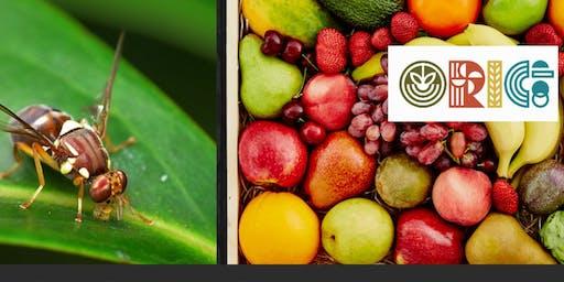 Organic Fruit Fly Management Workshop