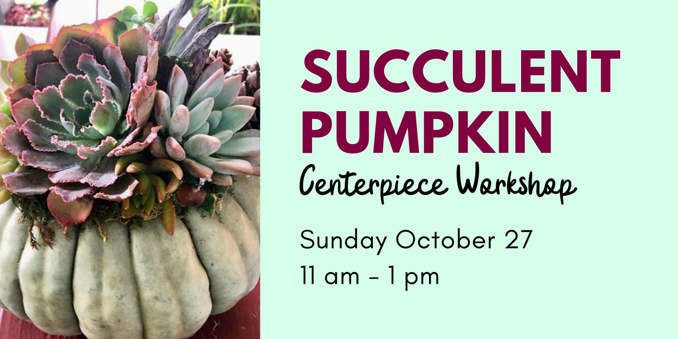 Succulent Pumpkin Centerpiece Workshop - 10/27