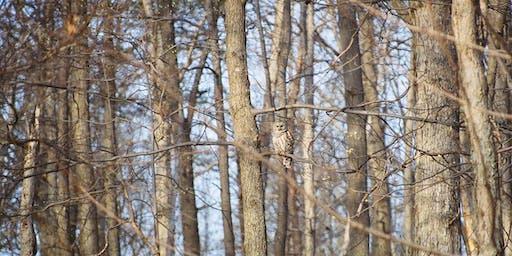 Raptor Release at the Piedmont Memorial Overlook